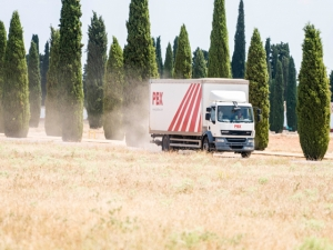 Transporte urgente en Almería - Trans David - Palibex