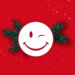 felices-fiestas-Palibex-2014
