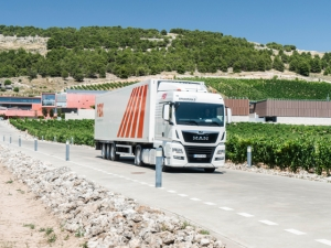 Palibex-Transporte Urgente en Calatayud-Transportes Lapuente.jpg