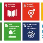 objetivos desarrollo sostenible - objetivos desarrollo sostenible transporte - palibex